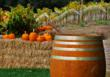 Harvest Time at Vine Hill Winery