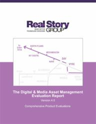 The Real Story Group's DAM / MAM Report Version 4.0