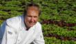 Chef Don Ferch and Field of TA Artisan Lettuce, Salinas, CA