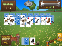 Great Solitaire Card Gameplay