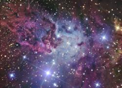 Fox Fur Nebula