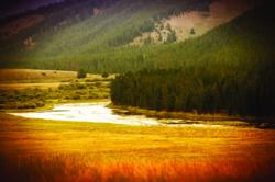 montana hunting land, montanan ranch auction, montana land for sale