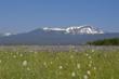 montana hunting land, montana land for sale, montana ranch auction