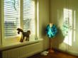 Budget Blinds suggests shutters, which are cord-free by nature, in homes where children and pets are present.