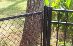 Black Chain Link Fencing Goes Great with Black Aluminum