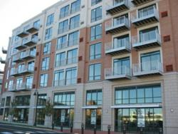 Luxury Apartment Rentals in Stamford, CT