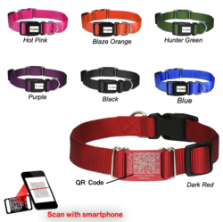 Dog Collars with QR Codes