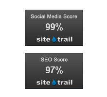 Social Media Score and SEO Score Widgets