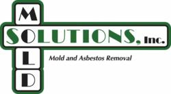 Mold and Asbestos Removal
