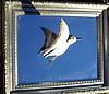 "Sanderling - Mirror Mounted Shore Bird In Flight  SILVER FRAMESize 18""x 16"""