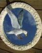 """Herring Gull - Mirror Mounted- WHITE FRAMESize: 19"""" diameter"""