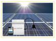 Enphase Microinverter - Solar Kit - Schott Solar Panels