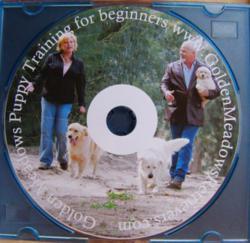 Puppy Training DVD, Golden Meadows Kennel, Beginner training DVD