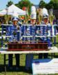 Parade Band Review Chula Vista Centennial
