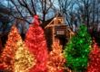 Over 4 million lights and one thousand trees fill the Silver Dollar City theme park for its An Old Time Christmas festival.