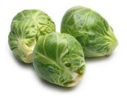 Brussels Sprout @ Olericulture.org