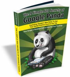 The 9 Simple SEO Secrets of Google Panda for Dentists