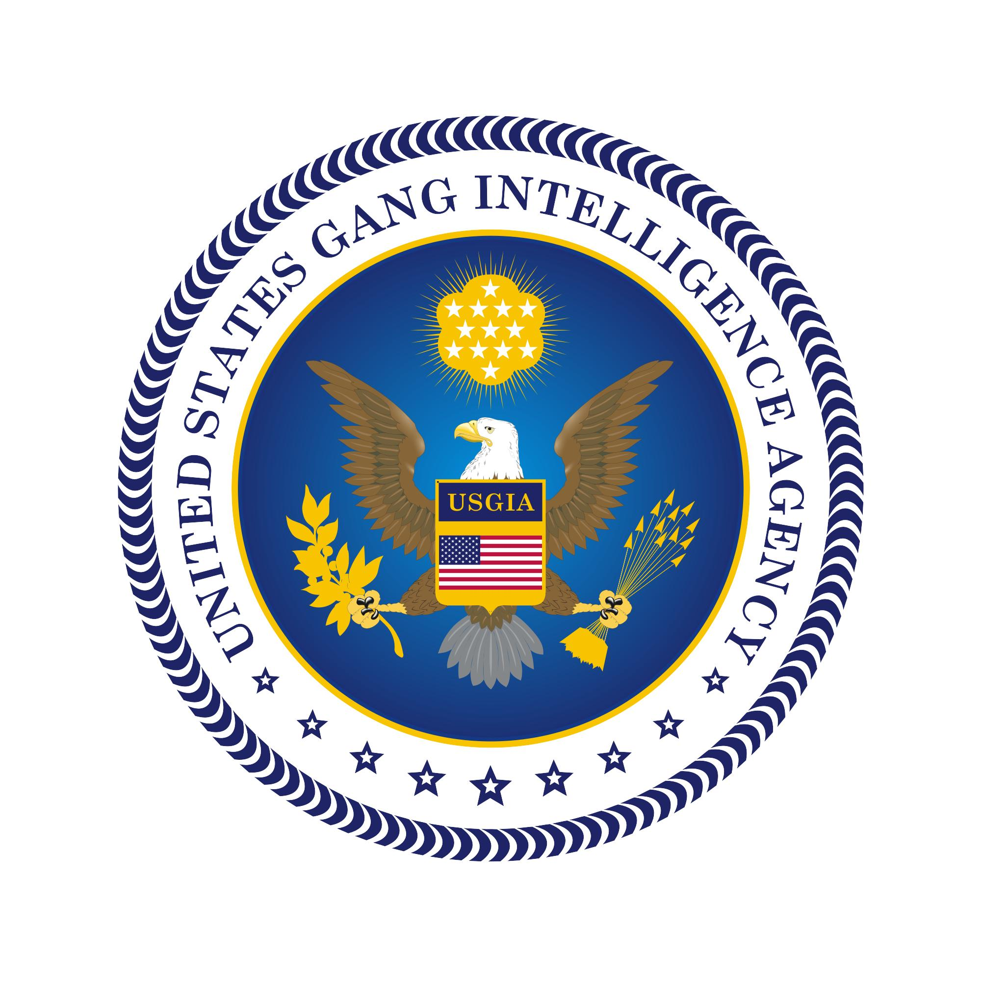 united states gang intelligence agency created to assist