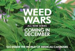 weed wars