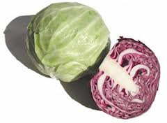 Cabbage @ Olericulture.org
