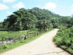 The Road to the Village of Gracie Rock, Belize