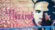 Art as a weapon film: artist Shepard Fairey