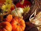 Kudalini, Yoga, Meditation, YogaSoul, Minnesota, Thanksgiving