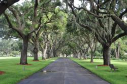Bay Pines National Cemetery Driveway