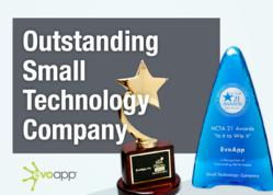 Outstanding Small Technology Company