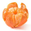 New Mikan (Satsuma) Resources Added to Pomology Magazine