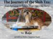 Raja the new CEO of Travel Dog Books, LLC
