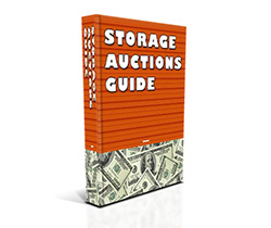 free storage auctions guide
