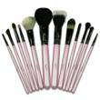 12 Piece Professional Makeup Brushes
