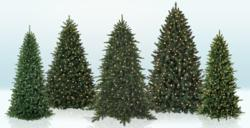 Top Artificial Christmas Tree Picks