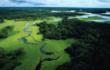 Seasonally flooded forest, Brazilian Amazon.        © Michel Roggo / WWF-Canon