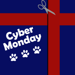 2011 Cyber Monday Dog Deals