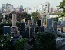 Aoyama Cemetery 2, Tokyo 1996, by Thomas Struth