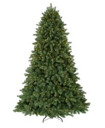 Classic Noble Fir Christmas Tree