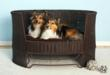 Indoor/Outdoor Dog Day Bed