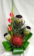 Hawaiian Protea Arrangement