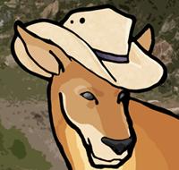 Buck A. Roo is the Marsupial Mascot of SevenBuckaroos.