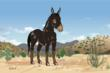 Gabriel is a retired swayback mule and an unlikely hero in the story.