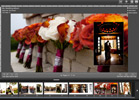 wedding album designer application, album proofing application, photo album designer applicaiton