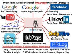 Atlanta Social Media and SEO Course Platform Experience