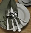 Oneida Atlas Flatware