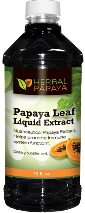 Herbal Papaya Products Launch Its Papaya Leaf Tea And