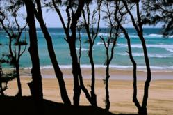 Praia do Barra is one of Mozambique's most popular beaches, right at the tip of the peninsula in Inhambane Province.
