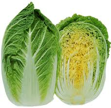 Chinese Cabbage @ Olericulture.org