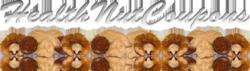 Healthnutcoupons logo