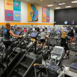 AFC Fitness Benefits from Bally Gym Closings
